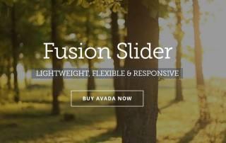 Tutorial fusion slider avada 1